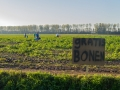 60.000 kg gratis sperziebonen te plukken aan de Lugtenburgsedijk in de gemeente Strijen - Foto MS Fotografie | Marc van der Stelt