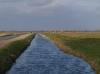 Wandeling Waleweg Strijen - Gert - Jan en Wil Notenboom - 2 Februari 2014