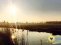Zonsopkomst Oudeland van Strijen - Damian de Jong