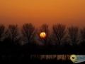 Zonsondergang Oudeland van Strijen - Marc van der Stelt
