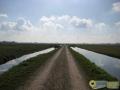 Tijdens wandeling door het Oudeland van Strijen gemaakt door Marie-cecille Van Der Graaf