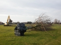 Natuurgebied Molendijk - Keizersdijk Strijen - Mary Romijn Fotografie