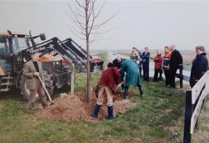 Millenniumboom 2000 A11